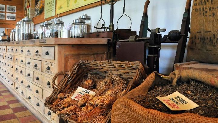 Groupes - Immersion au coeur des parfums Molinard